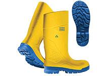 Ranpro Boots